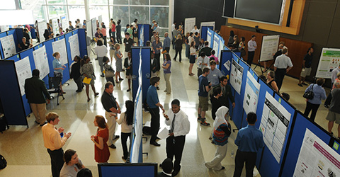 An IRP poster session.