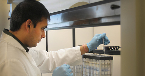 A trainee at work in the lab.