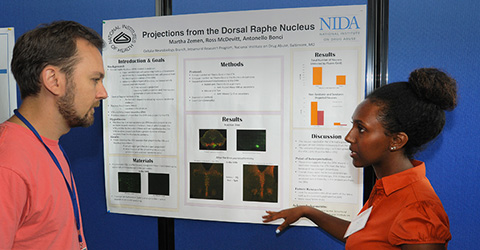 A trainee at an IRP poster session.