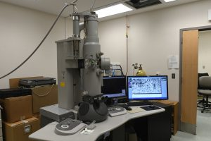 Zeiss Sigma VP field emission scanning electron microscope (SEM) with Gatan 3View2 XP system