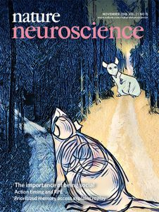 Nature Neuroscience Cover - November 2018